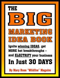 BigMarketingIdeaBookcover200